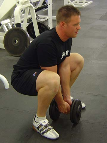 Pitchers workout Sumo exercise image